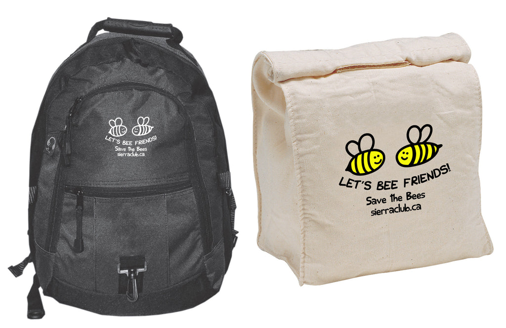 Take the Bees to School!