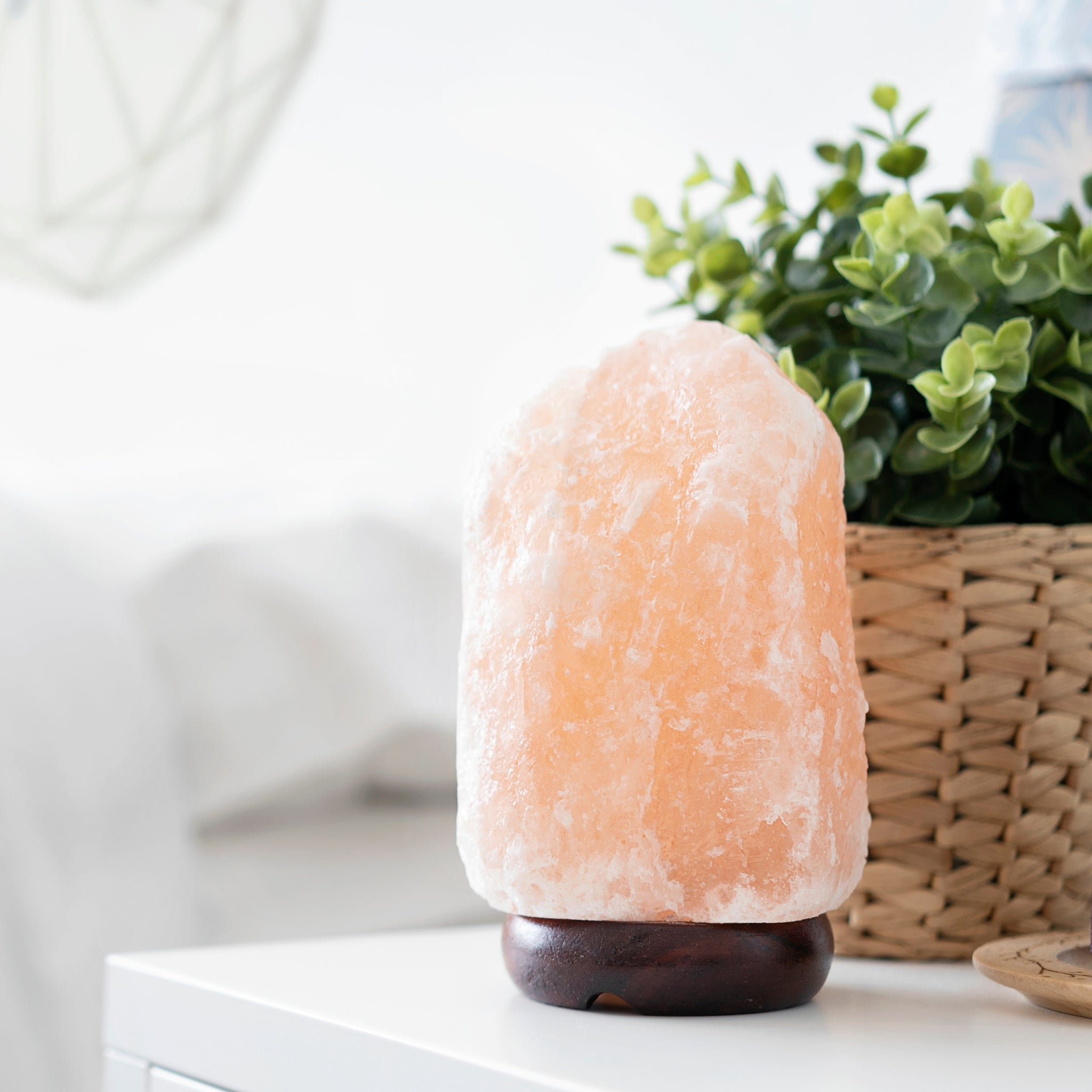 1-2kg Himalayan Pink Salt Lamp The Herb & Spice Co.