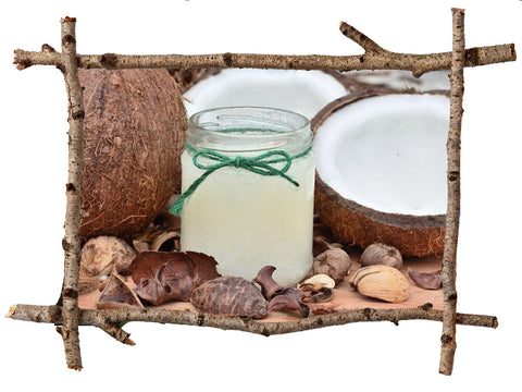 Liquid Coconut Oil Soap - Winter