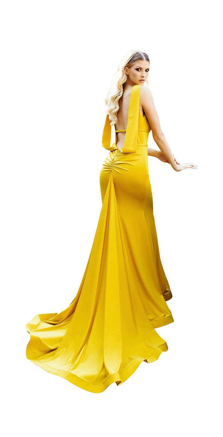 LONG PLUNGING NECKLINE GOWN WITH RUCHED BACK