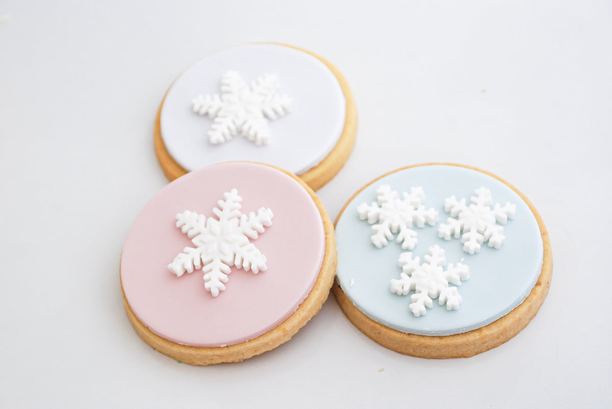 Kids Frozen Themed Cookie Decorating Workshop