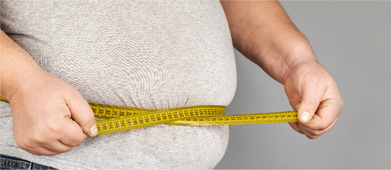 Obesity and Digestive Disorders