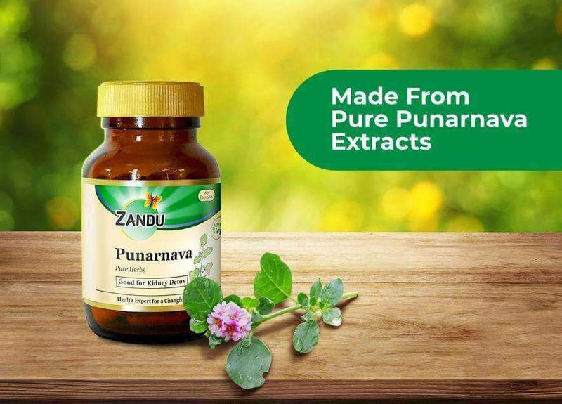 Punarnava (60 Caps) & Tulsi Drops (32ml)
