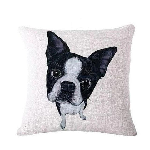 coussin boston terrier