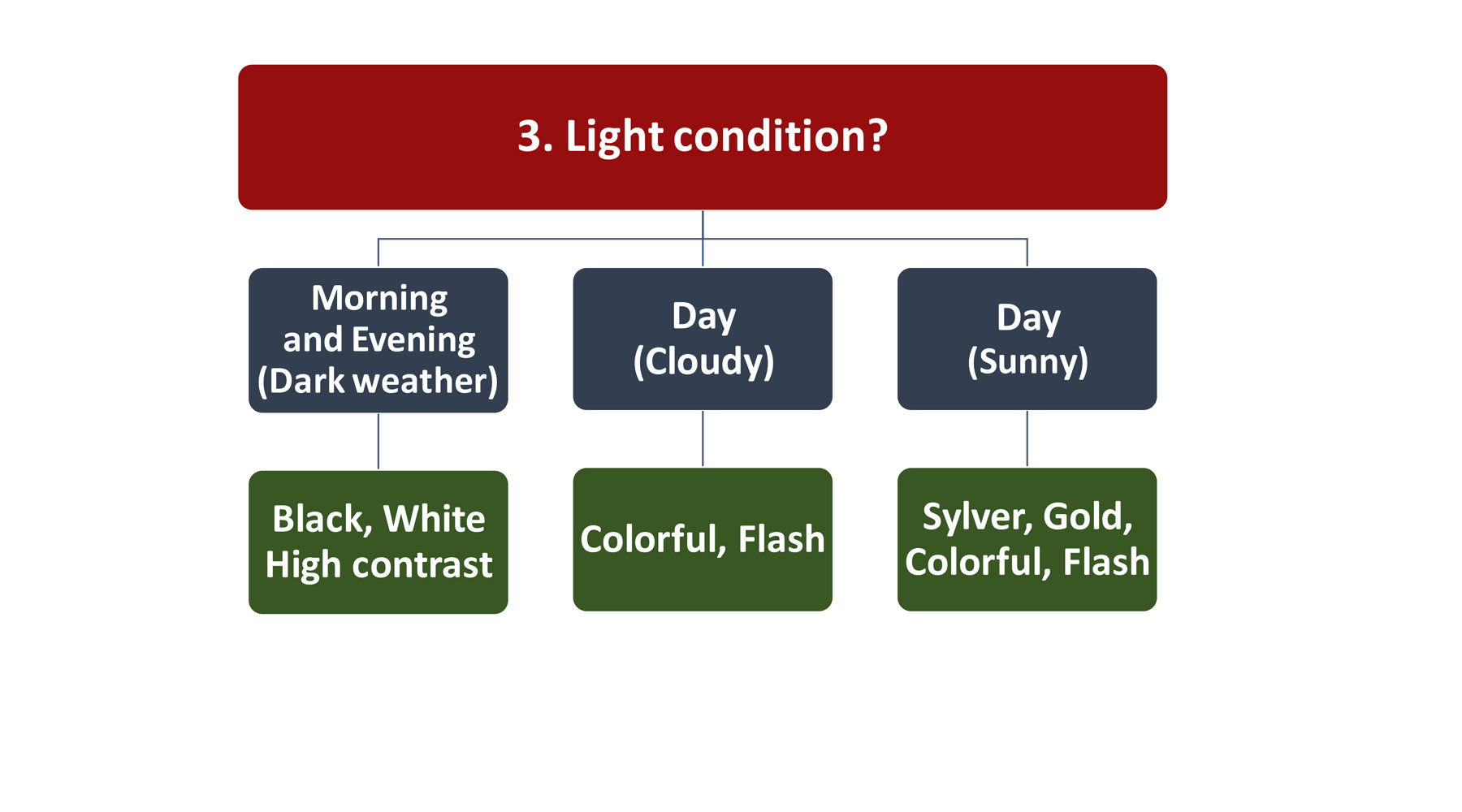 Fly fishing light condition graphic