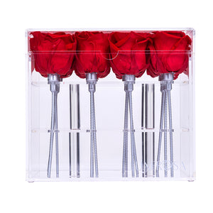 16 Real, Forever, Preserved Roses In An Acrylic, Clear Display Photo Album Box