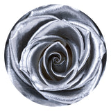 16 Infinity/ Forever Roses That Last A Year In An Acrylic Display Photo/ Album Box