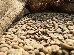 AMATISTA Veracruz - Medium Roast - Premium Arabica Beans