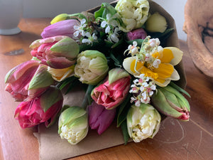 tulip, narcissus & cherry blossoms Bouquet, Seasonal Local Flowers.