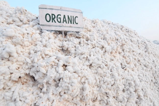 Why Is Organic Cotton Expensive?