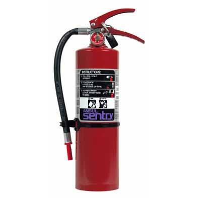 Ansul Purple-K, Pk05, Dry Chemical Extinguisher - 429008