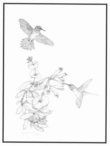 "19.  ""Black-chinned Hummingbirds and Coral Honey Suckle"" limited edition print by Georgean Z, Kyle"