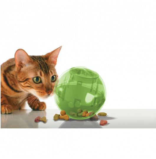PetSafe SlimCat Orange