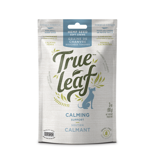 True Leaf True Hemp Calming Chew/Soutien Calmant