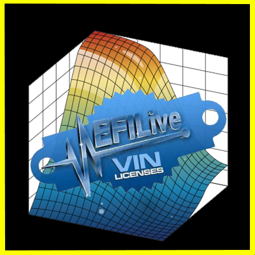 FLASHSCAN V2- EFI-LIVE VIN LICENSE