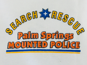 vintage PALM SPRINGS police department orange and blue graphic tee