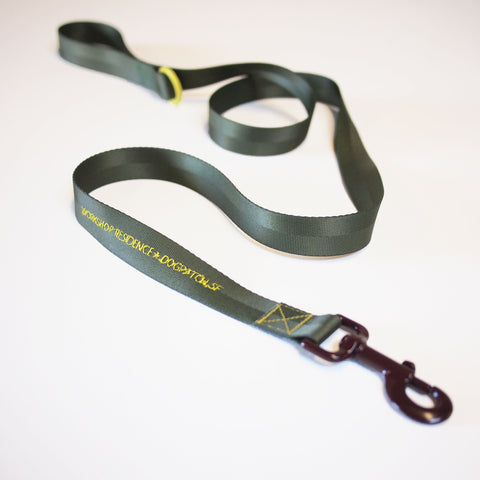 Lauren DiCioccio: Dogpatch Leash