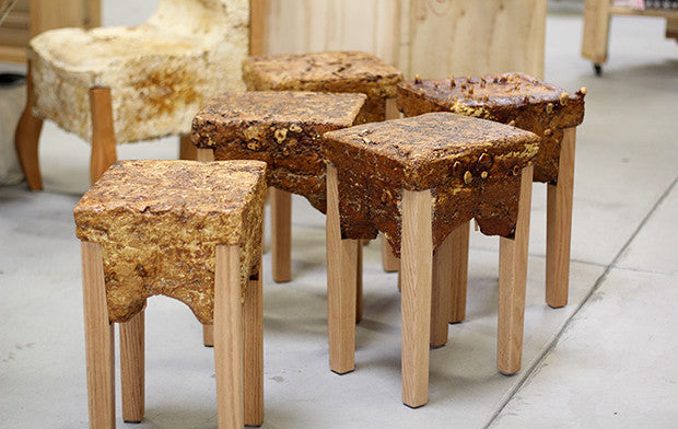 Oh Mycelium Products And Diy Projects Made From Mushrooms
