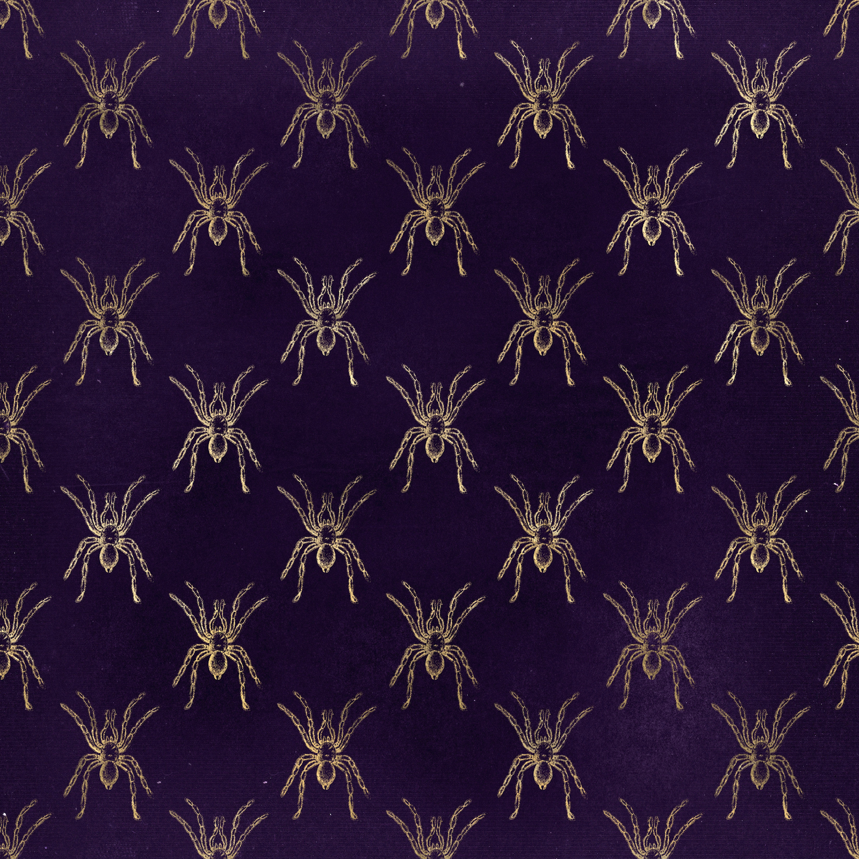 Halloween Costume - Arachnophobia - Gold spider print on distressed purple - Bodysuit