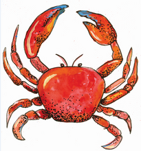 Load image into Gallery viewer, Charleston Crabs
