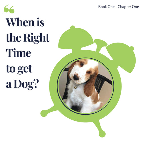Chapter 1. When is the right time to get a dog?