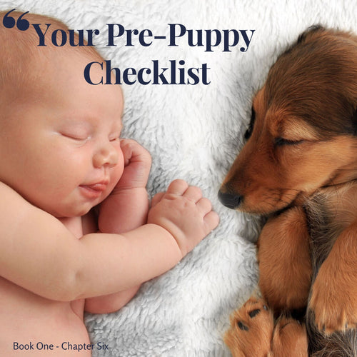 Chapter 6. Your Pre-Puppy Checklist
