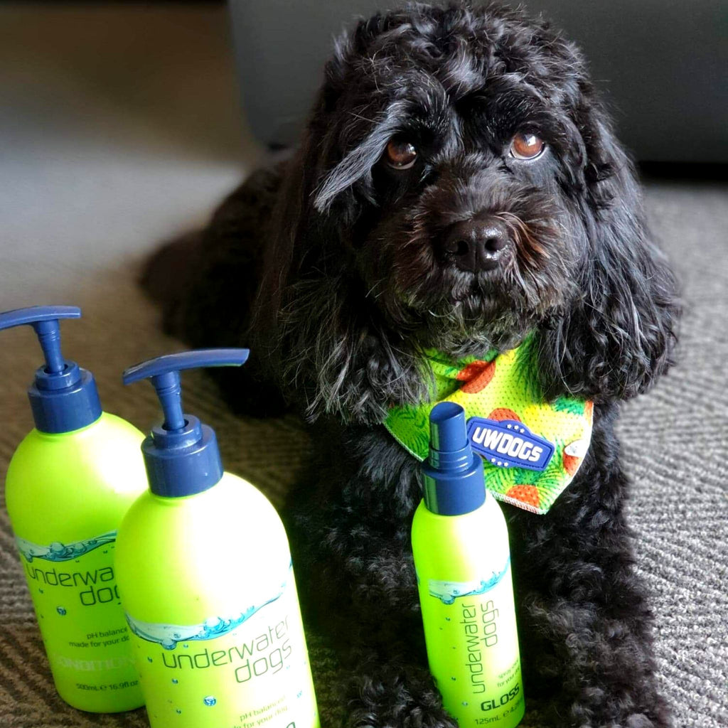 Dog Shampoo & Conditioner Tri-Deals 500mL