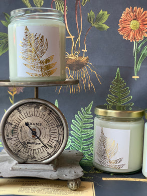 Fiddlehead Fern Aromatic Candle