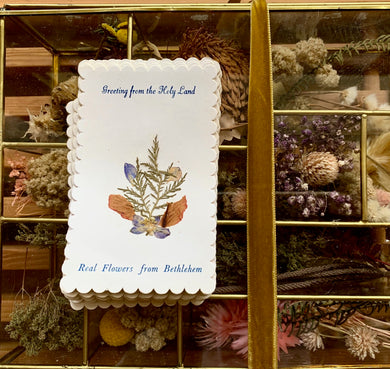 Greeting from the Holy Land Cards - PARCEL