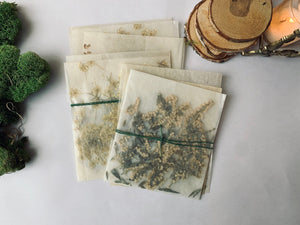 Pressed Flower Collection - PARCEL