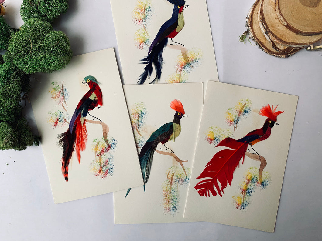 Vintage Mexican Bird Cards - PARCEL