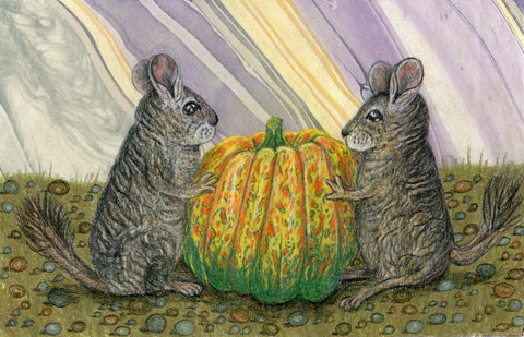 Two dewy eyed chinchillas claim a carnival squash as their own