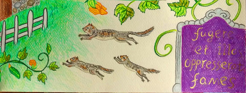 Squirrels flee the famine in latin
