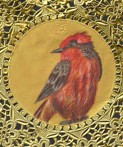 Vermilion Flycatcher Greeting Card