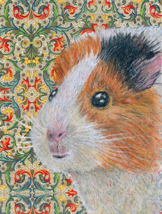 Guinea Pig Portrait greeting card