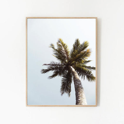 TROPICAL PALM TREE PRINT by: goldie&fawn