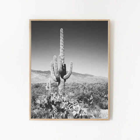 BLACK AND WHITE CACTUS PRINT by: goldie&fawn