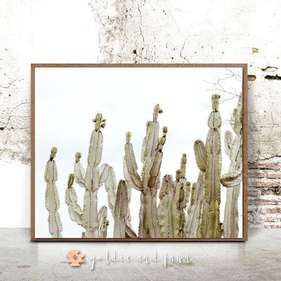 CACTUS PRINT #3 by: goldie&fawn