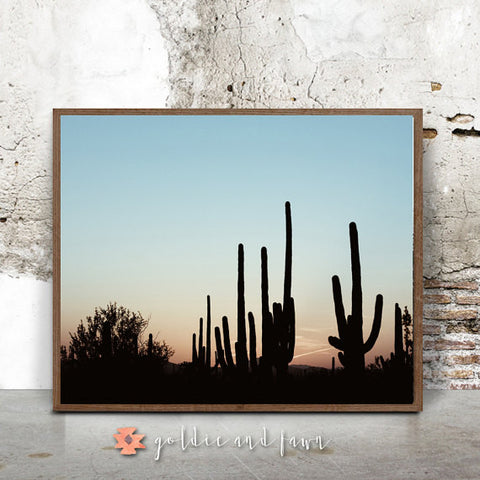 CACTUS SUNSET PRINT by: goldie&fawn