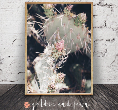 CACTUS ROSE PRINT by: goldie&fawn
