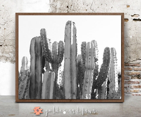 CACTUS PRINT #1 -black and white by: goldie&fawn