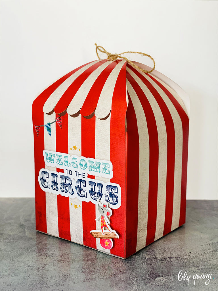 Circus Party Package