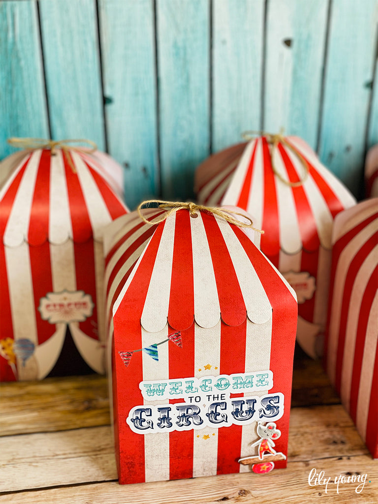 Circus Boxes - Pack of 12