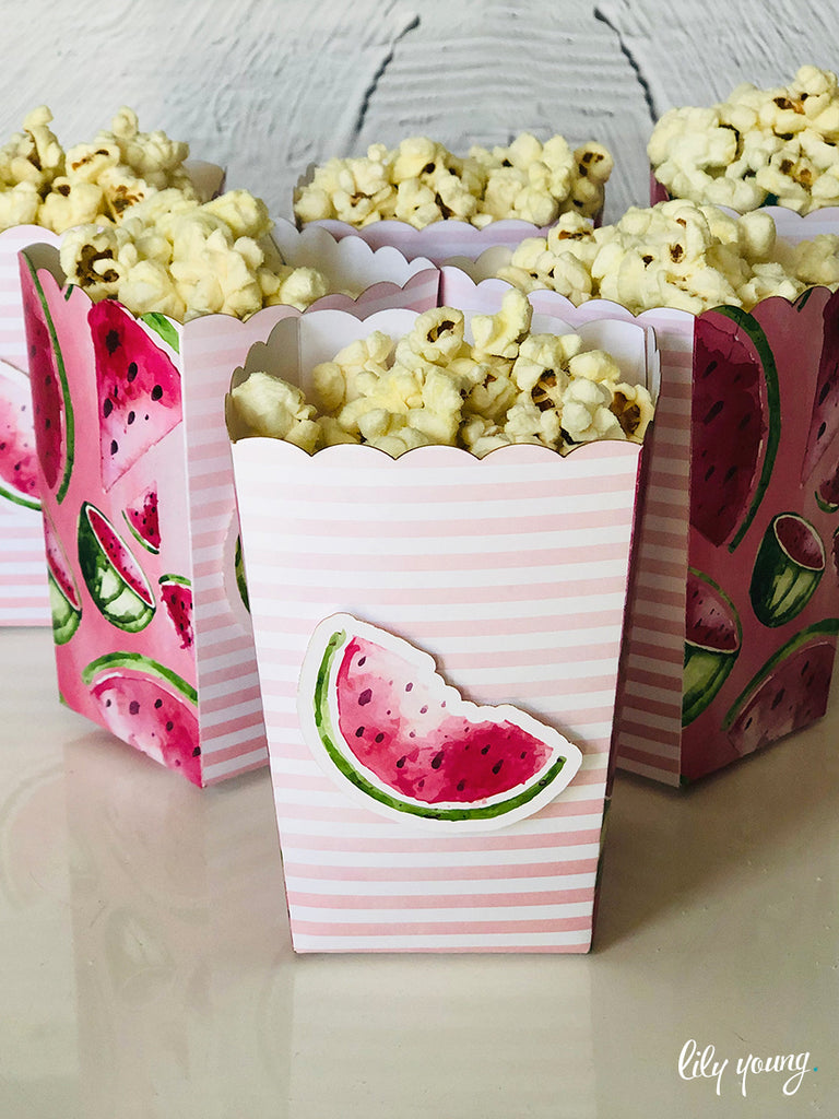 One in a Melon Popcorn boxes - Pack of 12