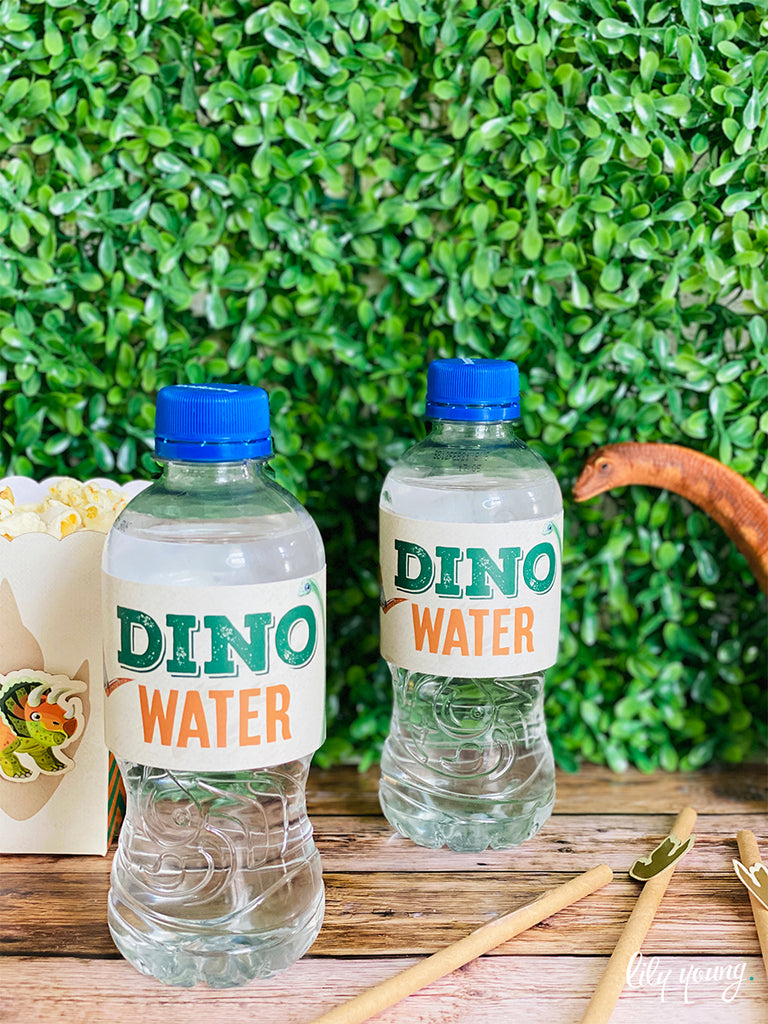 Dinosaur Water Bottle Labels - Pack of 12