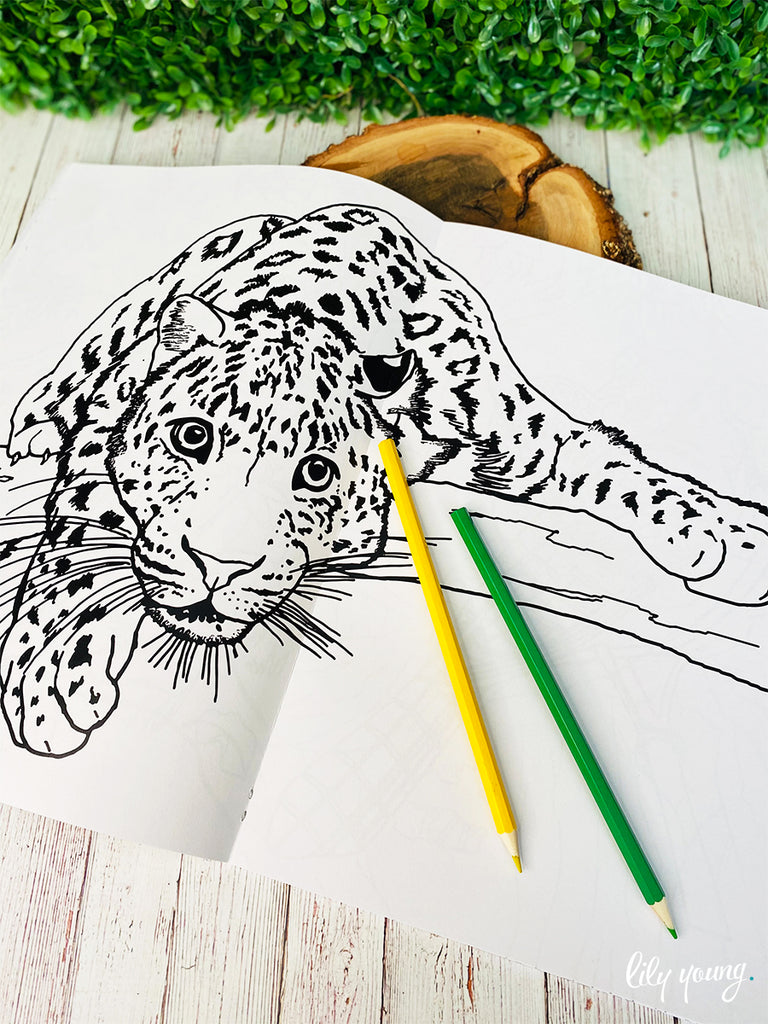 Little Picasso - Safari Colouring Book