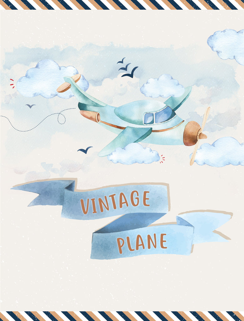 Vintage Plane Party Package