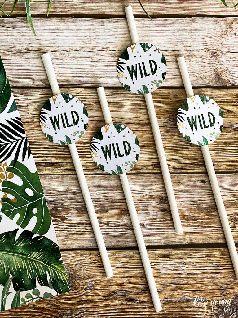 Wild One Straw Flag set - Pack of 12