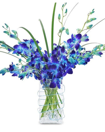 blue orchid same day flower delivery in chicago. IL