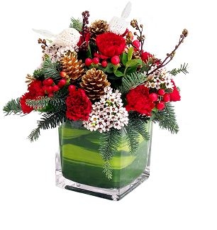 Christmas Flowers Christmas Arrangement Christmas Centerpiece Delivery Chicago